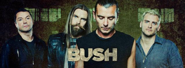 bushband2012_638