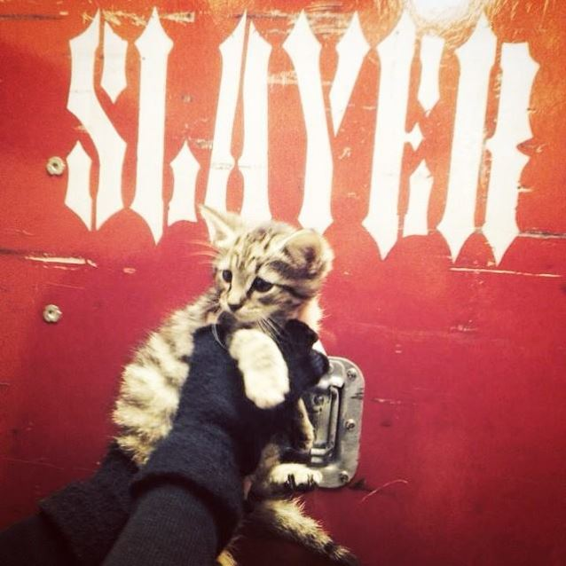 slayercatindy
